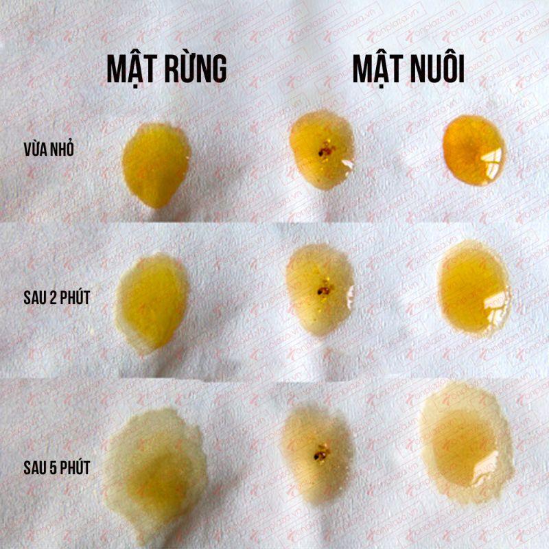Dùng khăn giấy phân biệt mật ong thật