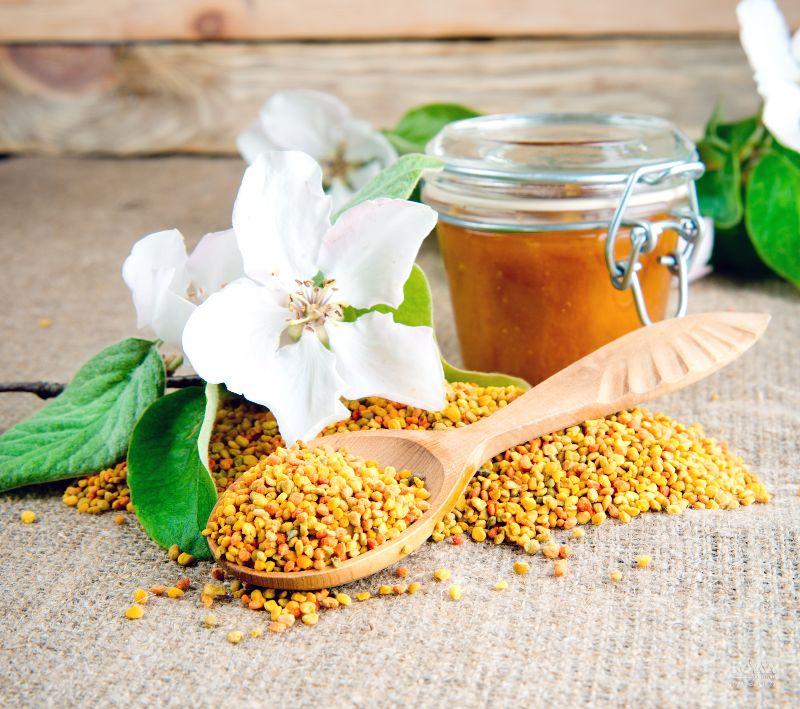 Phấn hoa được mệnh danh là thực phẩm vàng của tự nhiên