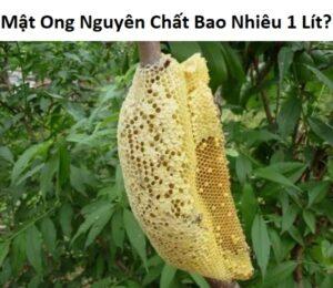 mật ong nguyên chất bao nhiêu 1 lít